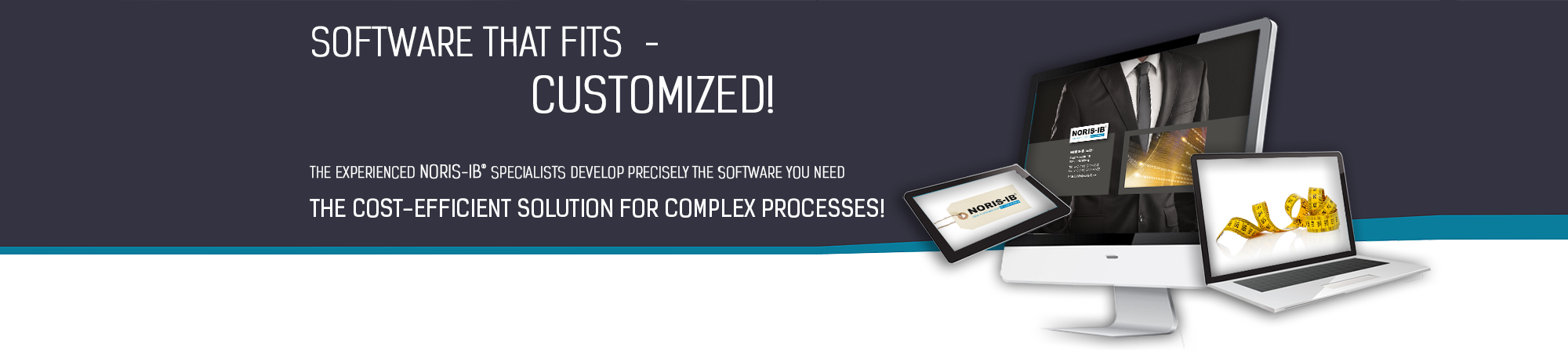 Software that fits-customized. The Experienced NORIS-IB Specialists Develop Precisely the software you need the cost-efficient solution for complex processes!